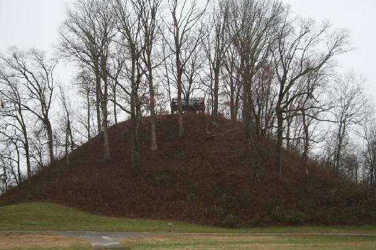 pinson-mounds-state-park (1)