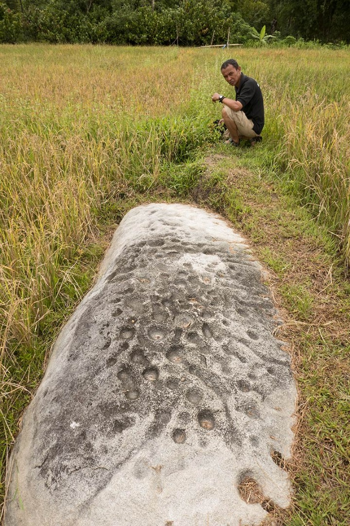 09 Dakon monolith with cup and line marks, with archaeologist Iksam Djorimi, near Lengkeka village, Bada Valley